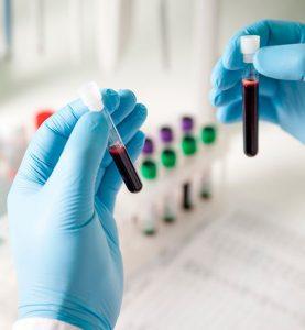 Biology Technology Science Studies